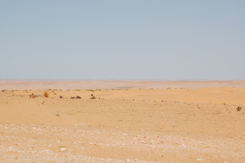 Ørken.