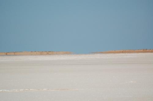 Saltsø; som kaldes chotts.