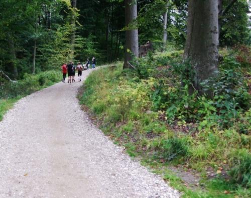 Halvorsen trail