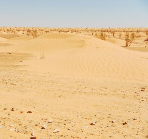 En verden af sand.