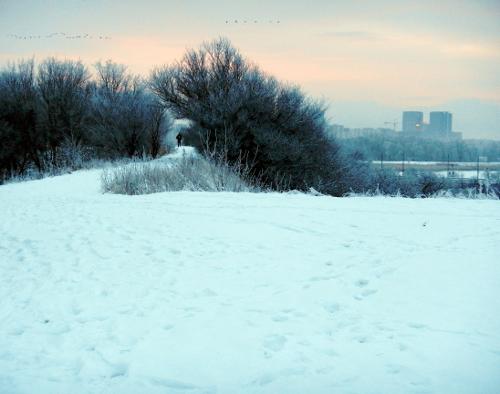 Toppen af Nokken klædt i sne. En hård og kold tur.