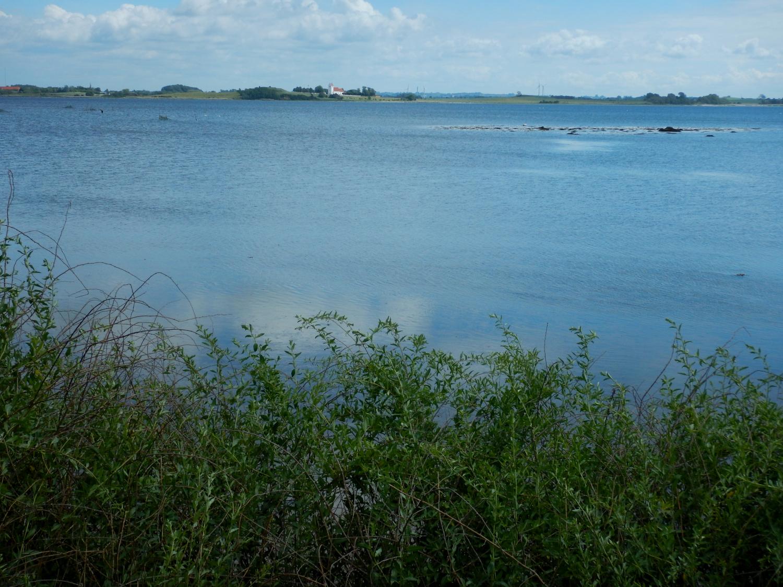 Landskabsbilled med blik ud over vandet
