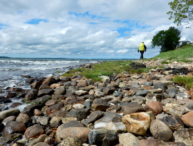En vandre på en strand med mange sten