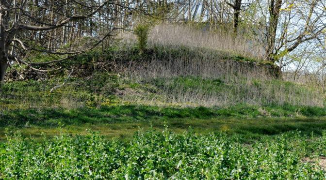 To gravhøje nær Torslunde