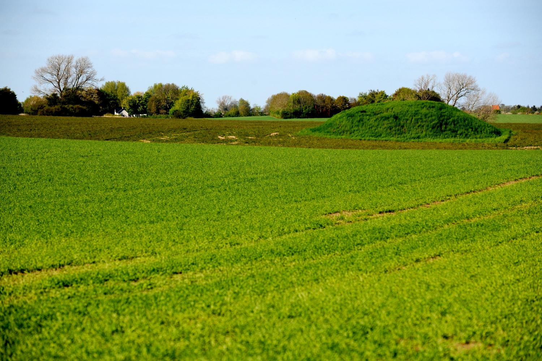 Rundhøj i et landbrugslandskab