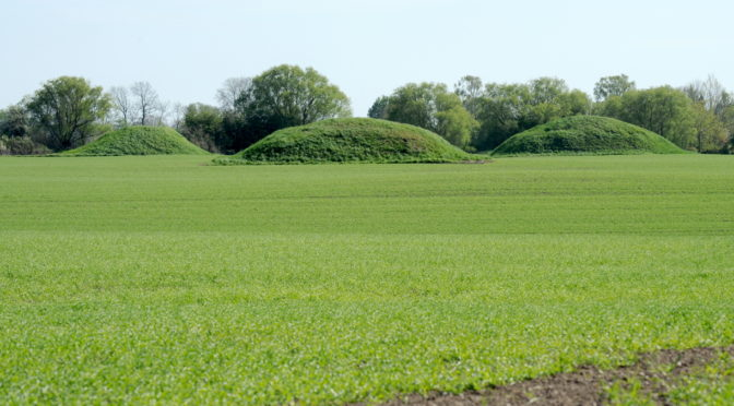 Tre rundhøj på grøn mark