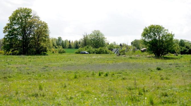 Oldtidsminder ved Store Rørbæk