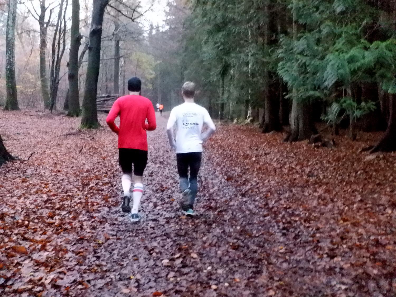 To løbere på en vej dækket af visne blade i en skov
