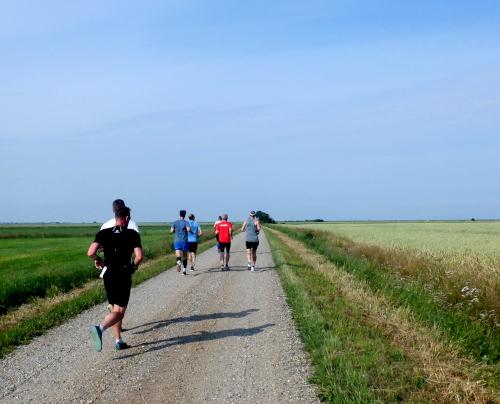 Løbere på grusvej i et åbent landskab