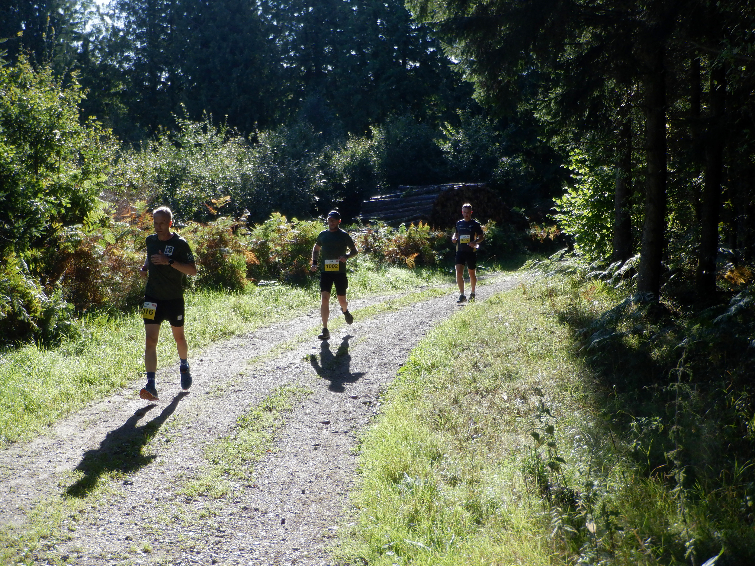 Tre løbere på en gruset skovvej.