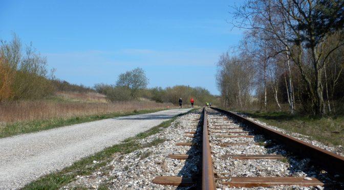 Hedelands naturtrail : Trailbilleder