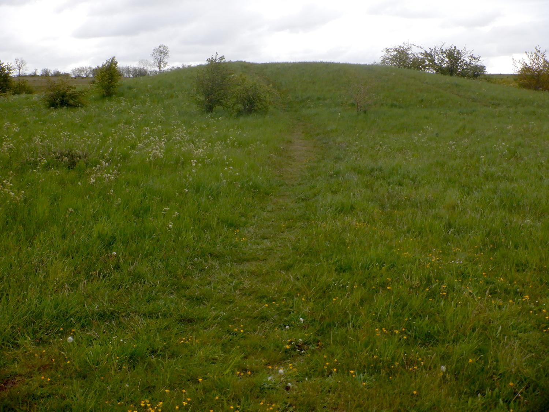 Grøn gravhøj omgivet af grønt græs