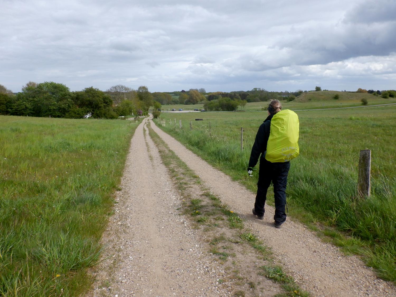 En vandre på markvej mellem to græsmarker og med træer i horisonten
