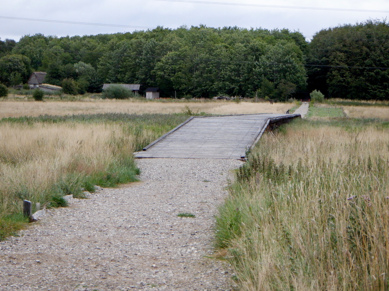 Vikingebro i fladt landskab. I baggrunden ses skov. Broen er bygget af træplanker