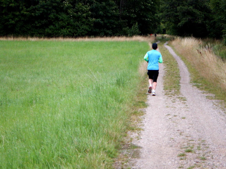 Løber på markvej - på vej mod skoven.