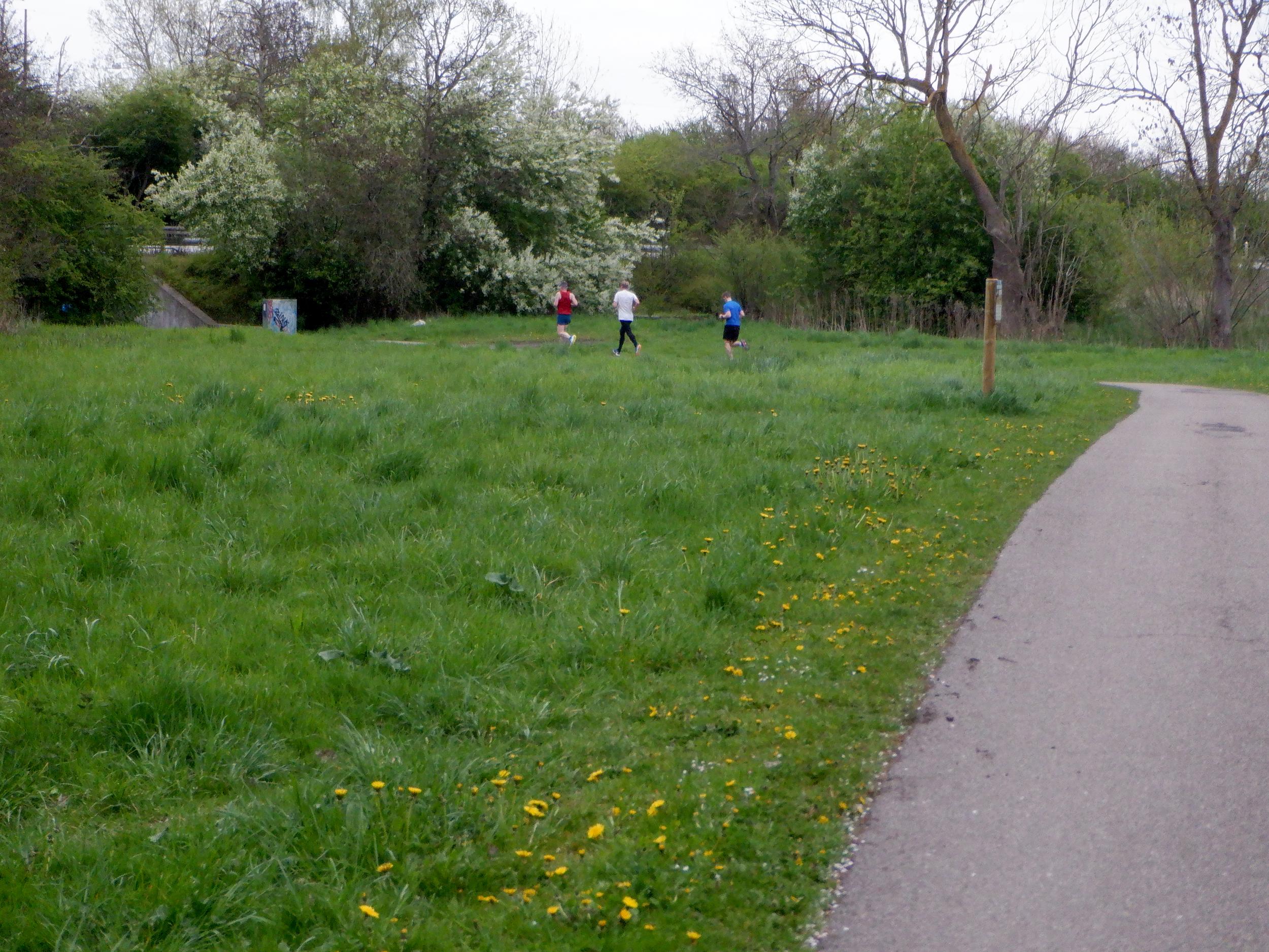 Grøn græs, grønne trær og tre løbere.