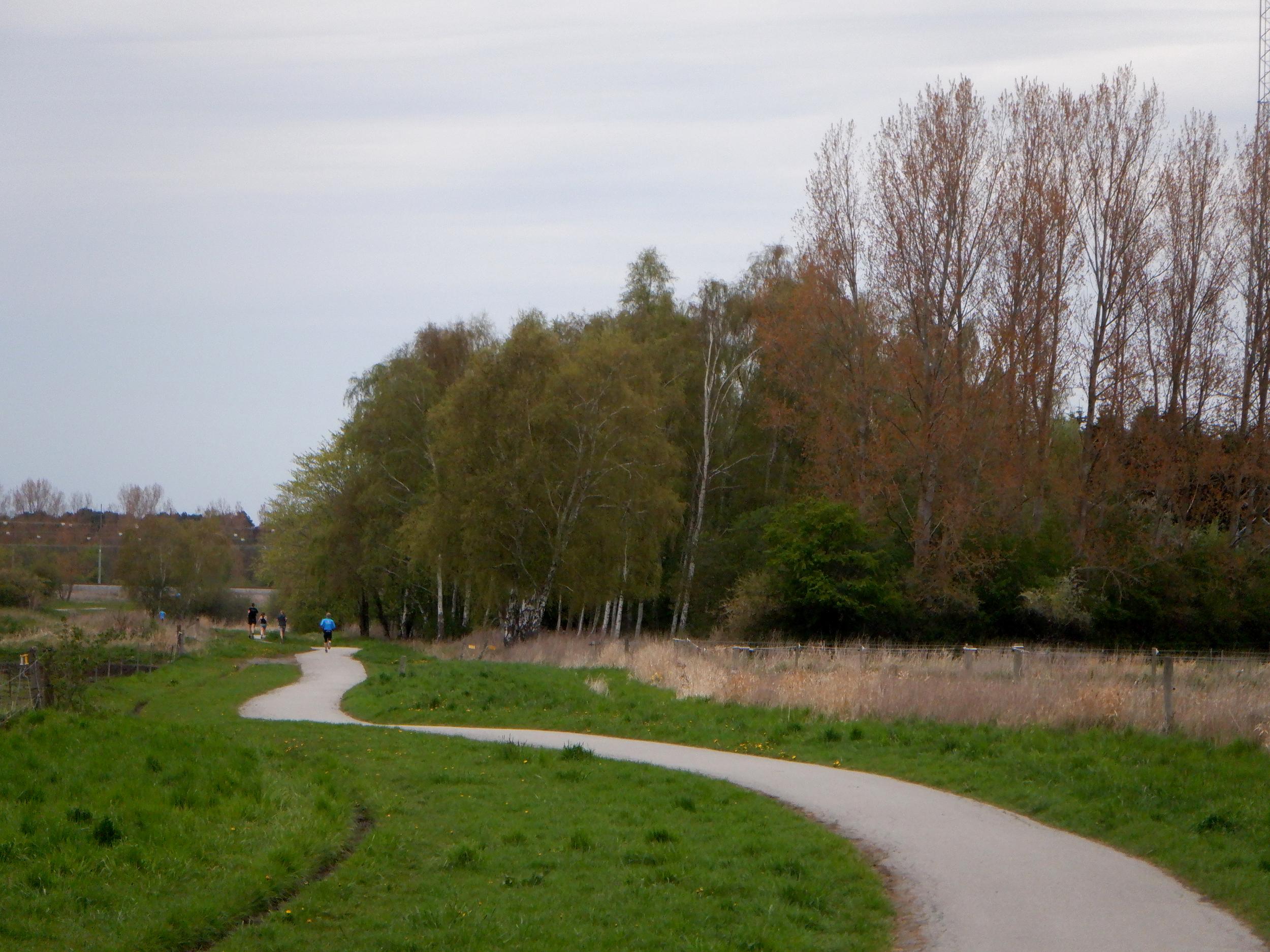 Grøn natur, en snoet asfaltsti og løbere i det fjerne.