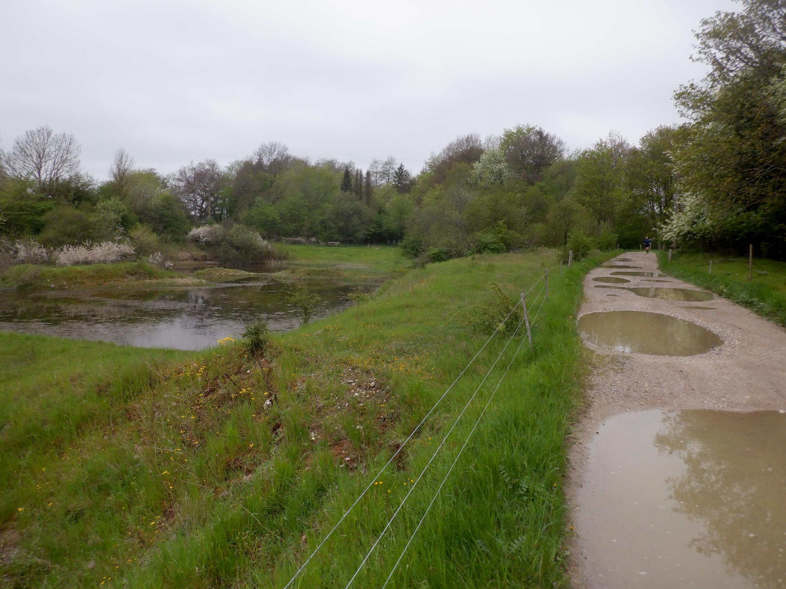 Landskab med vand