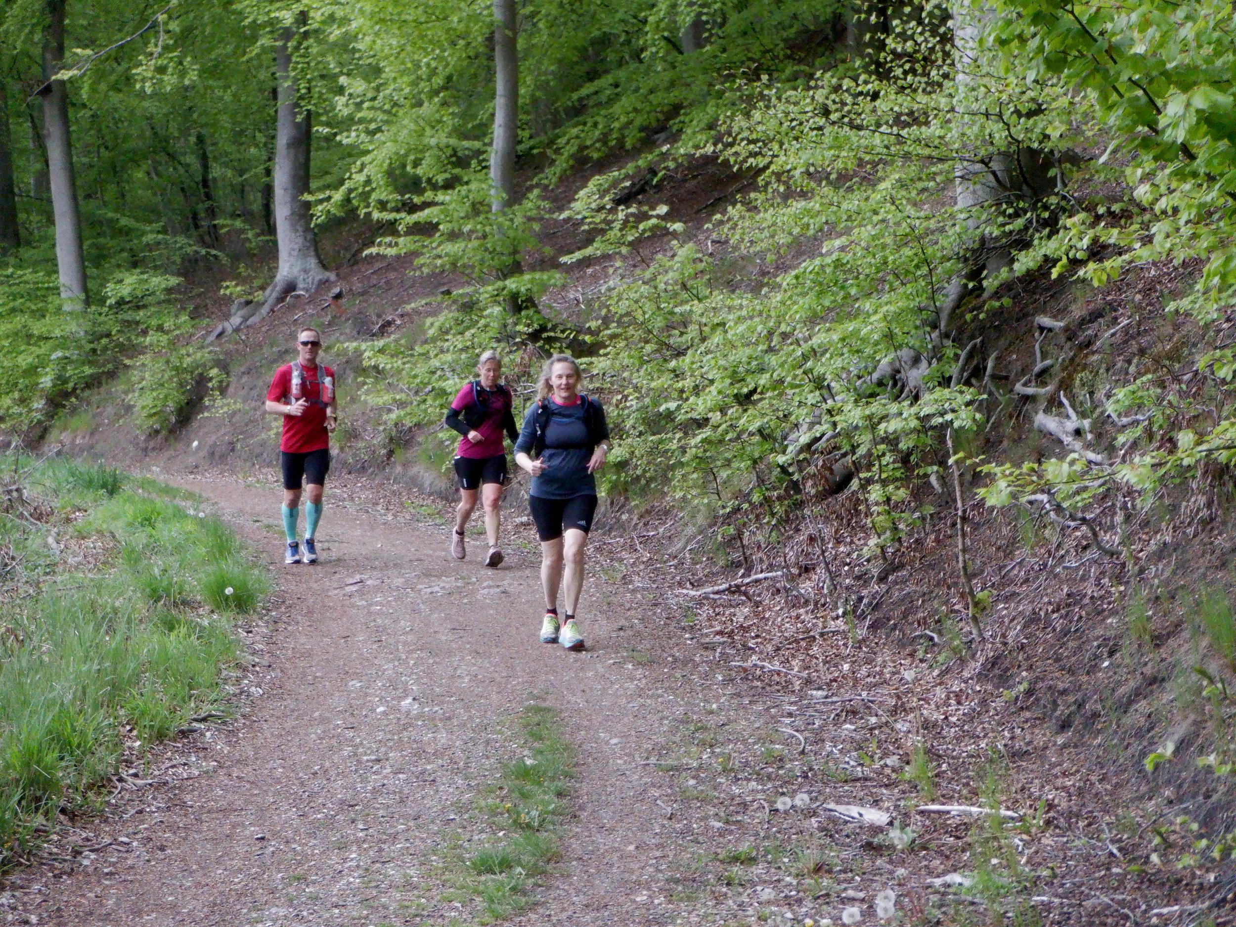 Tre løbere i skov