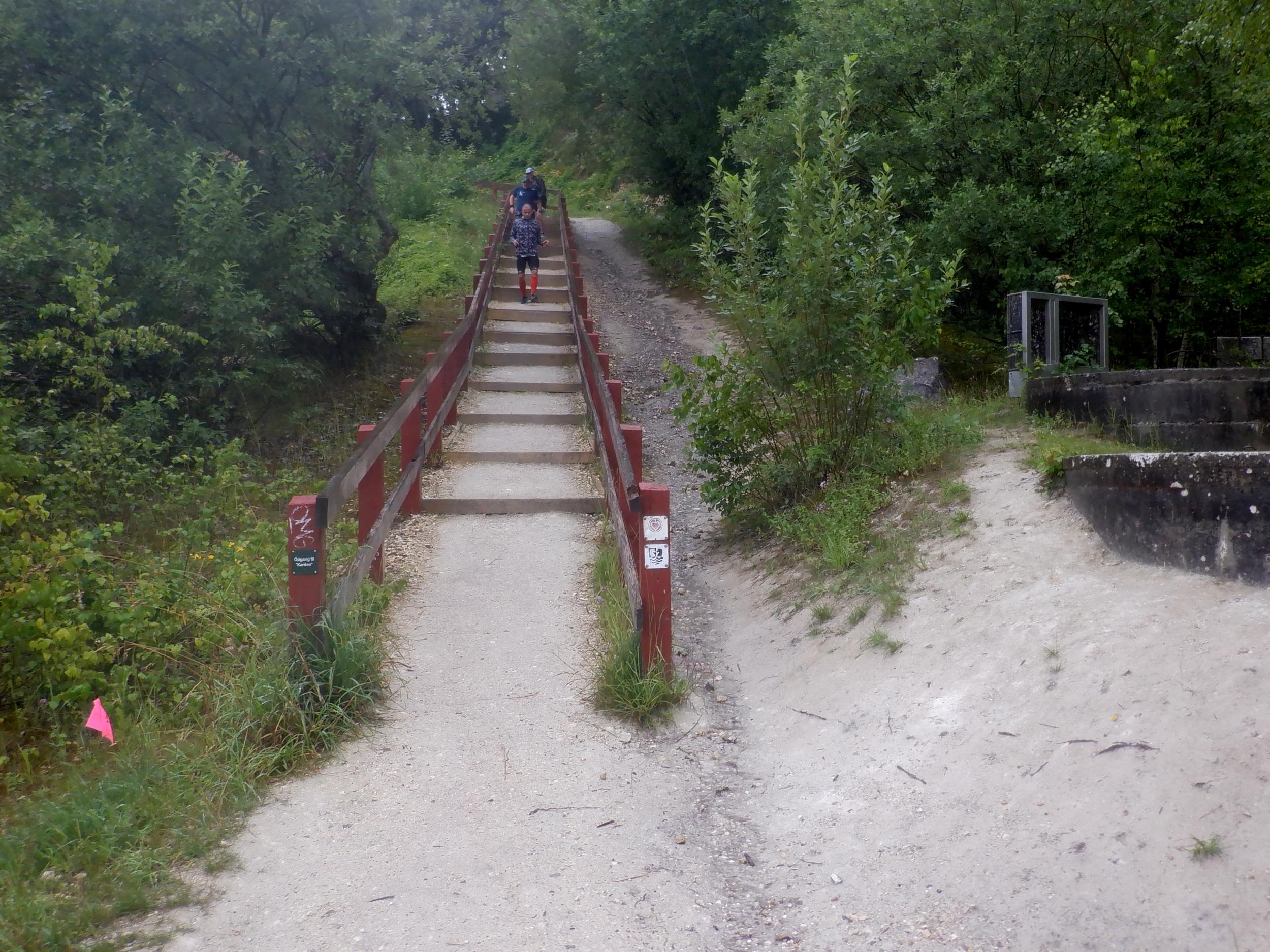 Naturtrappe ned i Faxe Kalkbrud. Et par løbere er på vej ned.